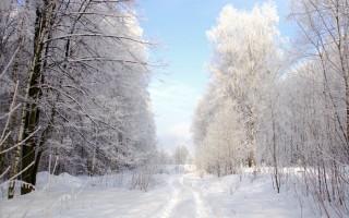 Как фотографировать зимние пейзажи