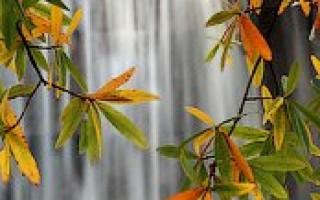 Фотографируем реки и водопады — эффект «молочных» рек