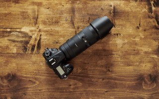 Маленький здоровячок. Tamron 70-210mm F4 Di VC USD