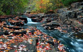 Обработка фотографий на фоне осеннего пейзажа