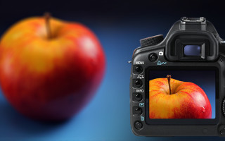 Выбор фотокамеры для предметной фотосъемки
