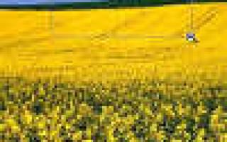 Фото урок Photoshop: эффект Zoom объектива