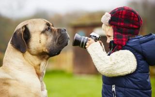 11 советов для начинающих фотографов