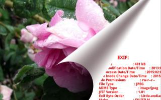 Базовые сведения о EXIF (Exchangeable Image File Format)