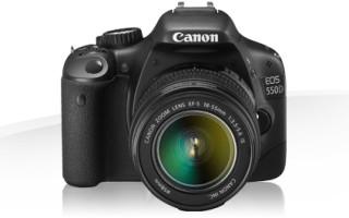 Новинка от Canon. Зеркальная камера Canon EOS 550D