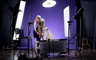 Фотографируем домашних животных
