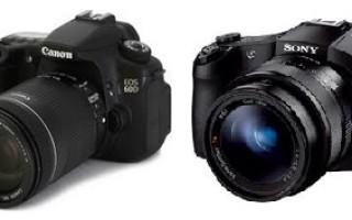 Сравнение камер Canon EOS 80D и Sony a6300